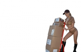 Shipping cost DPD - export